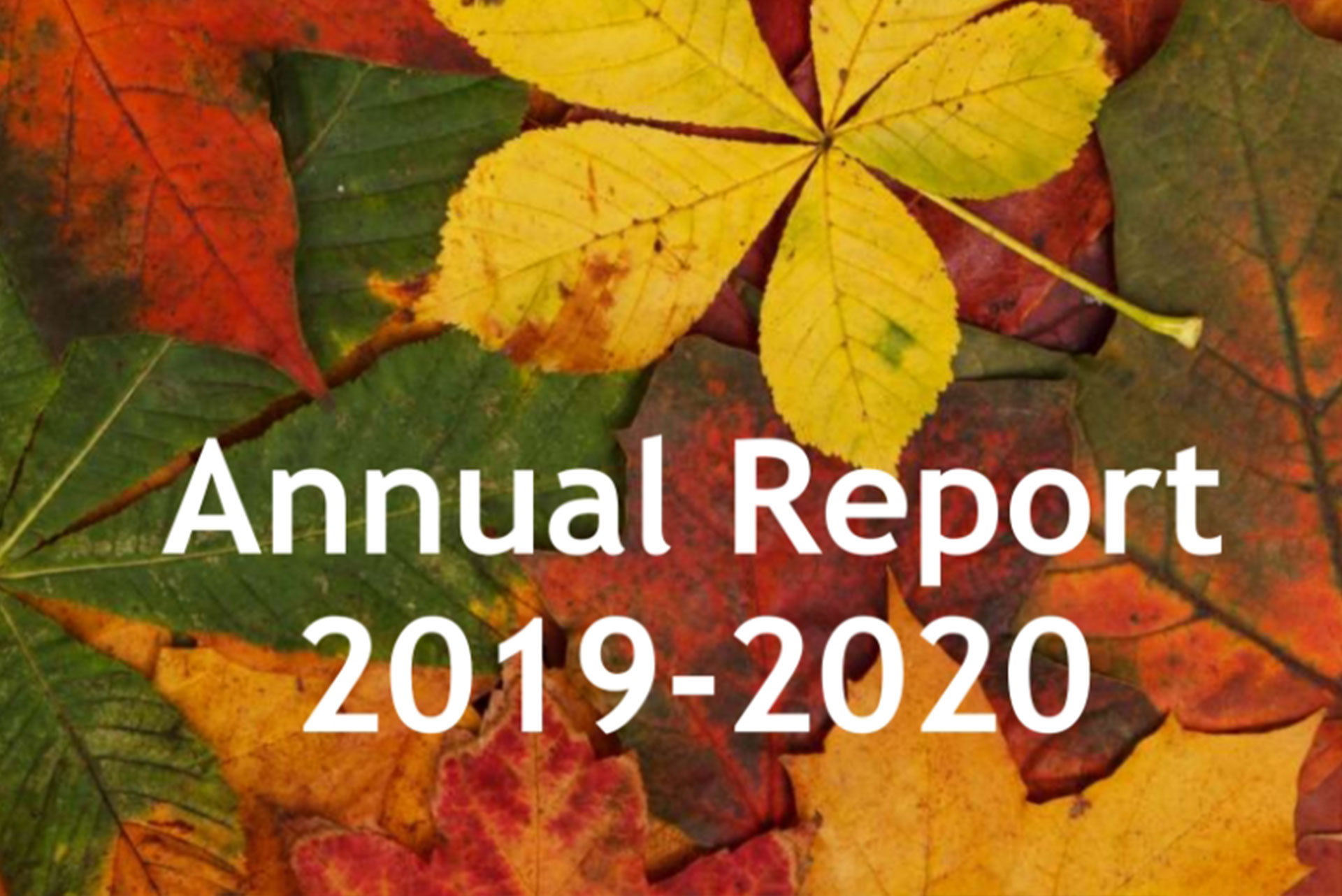 LRHCS Annual Report 2019 2020